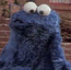 Cookie Monster TAOEIG