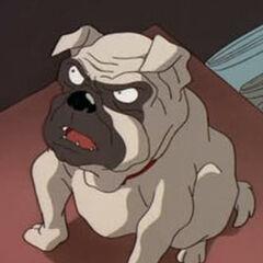 Frank, el perro también en <a href=