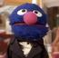 Grover TAOEIG