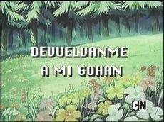 Devuélvanme a mi Gohan