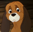 Toby cachorro