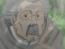 Soken Ishida