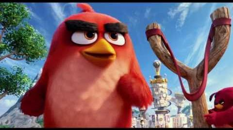 Angry Bird - Spot Side