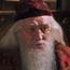 HP2AlbusDumbledore
