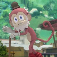 Anciano Mono en <a href=