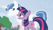 MLP-BBBFF2