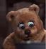 Mamà oso