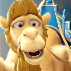 Félix, el camello en <a href=