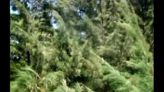 Poder Paralelo (trailer) - Rede Record