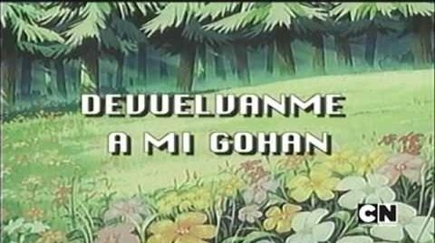 Devuélvanme a mi Gohan intro español latino (créditos en español)