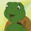 Mr. Turtle F