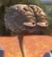 CerebroWLK