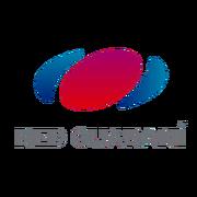 Red guarani py