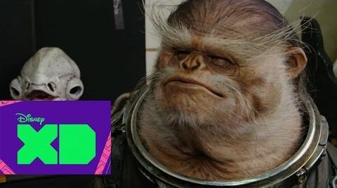 Las increíbles criaturas de Rogue One una historia de Star Wars - DXD Xtra