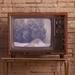 TVVoice - TS4R
