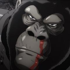 Gorila Blindado en <a href=