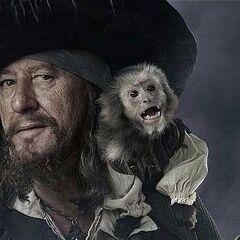 <b>Capitan Barbossa</b> en la franquicia de <b><a href=