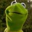 Kermit the Frog KSY