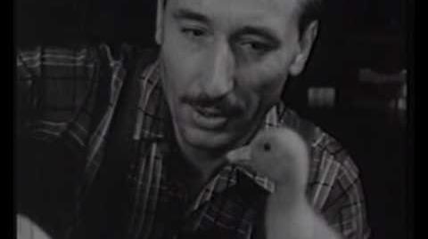Las aventuras de Saturnino-1965 1970