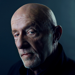 Mike Ehrmantraut en <a href=