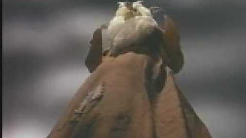 El tesoro de los duendes (Audio latino)-2