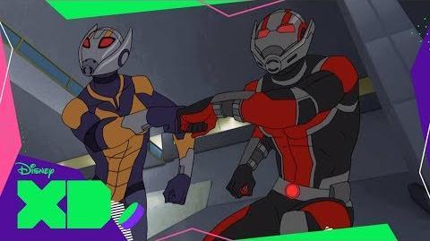 Ant-Man y Avispa Los Vengadores de Marvel Guerras Secretas