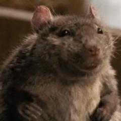 Emilio la rata en <a href=