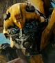 Bumblebee Revenge of Fallen
