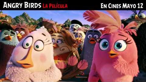 ANGRY BIRDS La Película (TEMPER TV SPOT) doblada a español