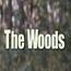 The Woods 2006 Insertos