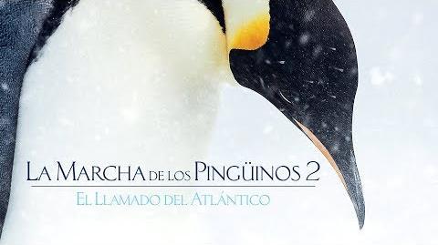 La Marcha de los Pingüinos 2 - De Disney Nature - Tráiler oficial doblado al español