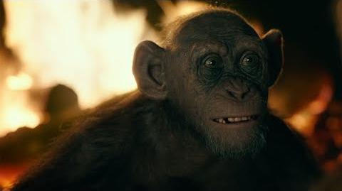 El Planeta de los simios La Guerra Clip Simio Malo doblado Próximamente - Solo en cines