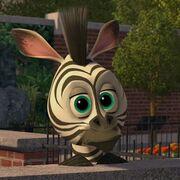 Marty Bebé de Madagascar 2