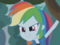 FGC-RainbowDash