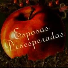 Título en español durante la versión corta del tema de entrada.