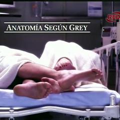 Título en español usado en el tema de apertura durante las dos primeras temporadas.