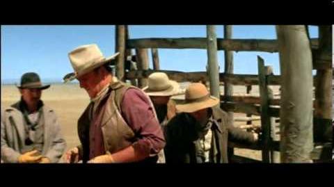 BLAS GARCIA LOS COWBOYS2