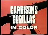 Los comandos de Garrison