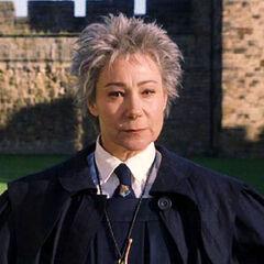 Madame Hooch (Zöe Wanamaker) en <a href=