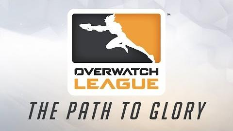 Liga de Overwatch explicada