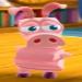 Pig Nephew -2