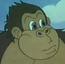 Donkey Kong Dk
