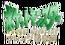 Pokemon Serie Original Capítulo Naranja logo