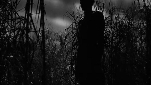 Yo caminé con un zombie (1943) El viento y los cañaverales (Español Latino)
