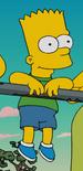 Bart (8 años) (Fland Canyon)