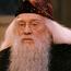 HP1AlbusDumbledore