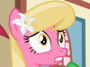 MLP2x6Lily