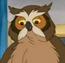 Mr. Owl F