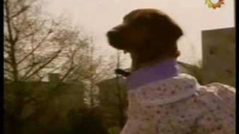 Mati, el perrito y su novia Priscila (Voz Martin Urbisaglia)