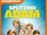Adam y sus clones